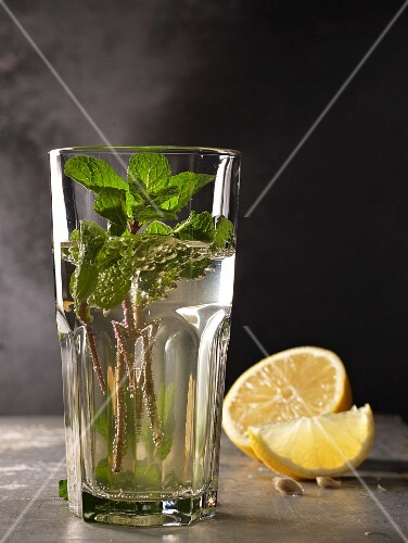 Mint tea in a glass with mint sprigs and lemon