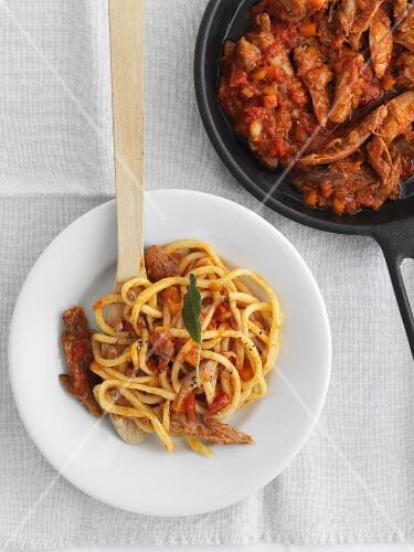 Bigoli with tomato sauce