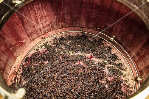 Red wine mash fermenting in a wooden tub