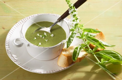 Broccoli and basil soup