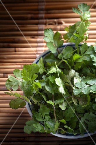 A bowl of fresh coriander