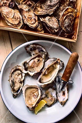 Fresh oysters (Marennes D'Oleron) with an oyster knife and lemon wedges