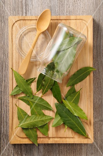 Fresh bay leaves with a glass and a spoon on a chopping board