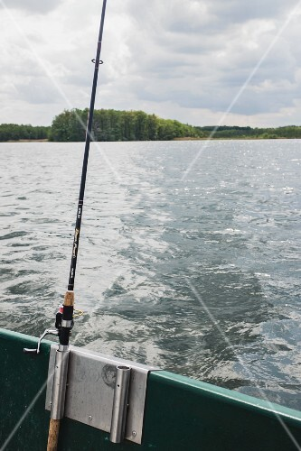 Fishing on Lake Müritz