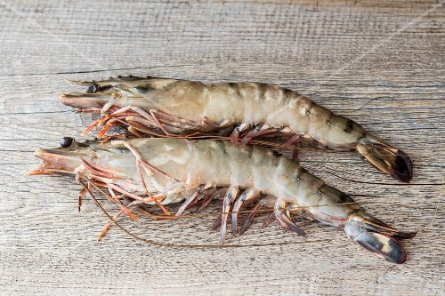 Two king prawns (Black Tiger prawns)
