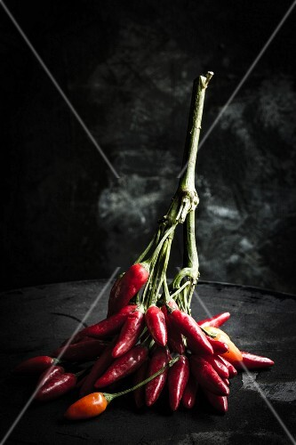 A sprig of red chilli peppers