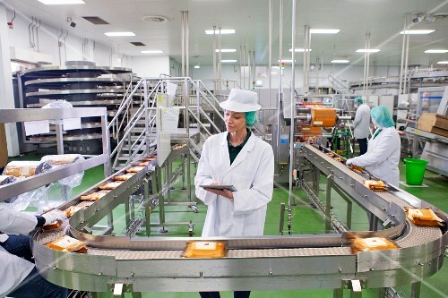 Quality control on a production line in a cheese factory