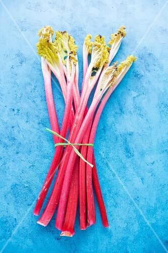 A bunch of rhubarb