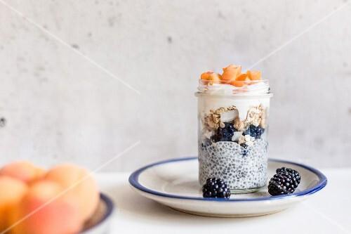 Muesli with yoghurt, tapioca, blackberries and apricots