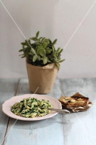 Nudeln mit Spinat und Knoblauchbrot