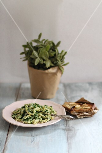Pasta with spinach and garlic