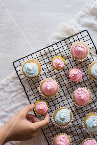 Cupcakes with pink and blue icing on a wire rack