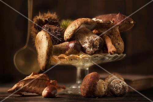Fresh porcini mushrooms with chestnuts and autumnal leaves