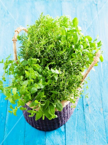 A basket of herbs with thyme, mint, chervil and rosemary