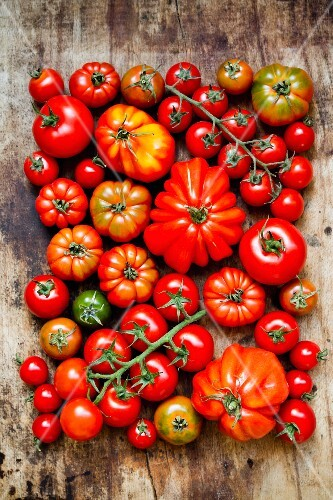 Lots of different tomatoes are wooden surface