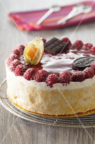 Raspberry cake with chocolate