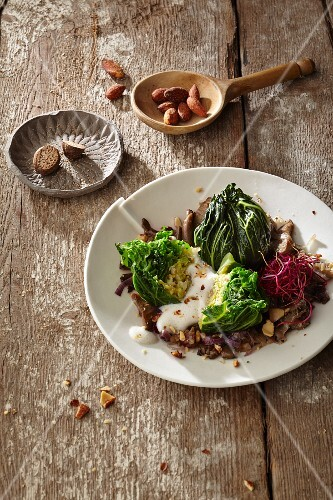 Glazed savoy cabbage bites with fried oyster mushrooms and smoked almonds