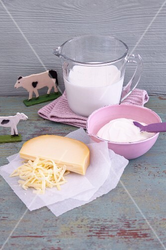 Dairy products (milk, yoghurt and cheese)