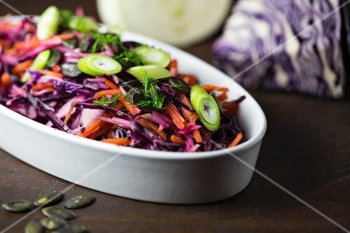 Rotkohlsalat mit Möhren, Fenchel, Kürbiskernen und Frühlingszwiebeln
