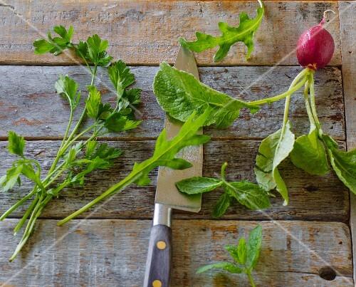 Parsley, rocket, mint and radish leaves