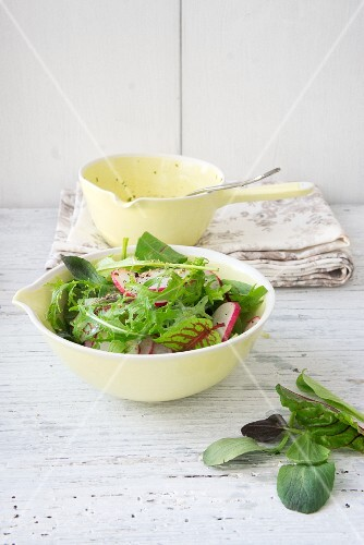 Lettuce with radishes and rocket