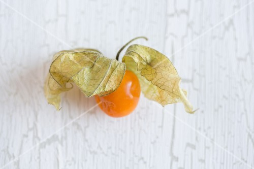 Physalis on a white surface