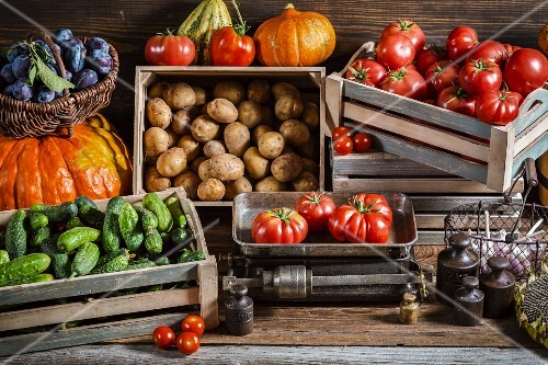 Various types of vegetables in crates and in a basket with plums