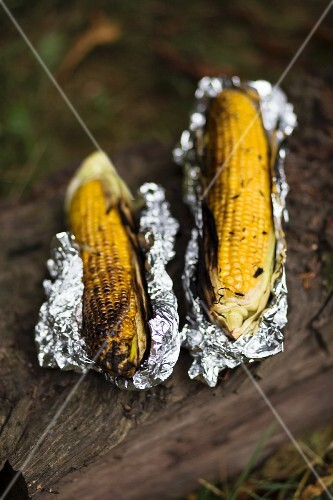 Grilled corn cobs
