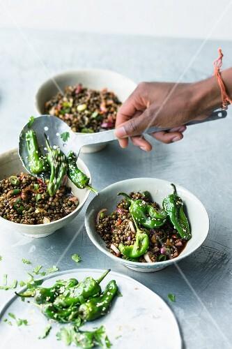 Puy lentil salad with pimientos de padron