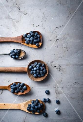 Blueberries on various spoons