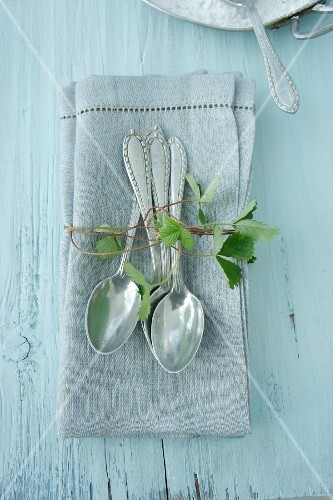 Silver spoons on linen napkin with strawberry tendril