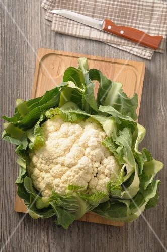 A fresh cauliflower on a wooden board