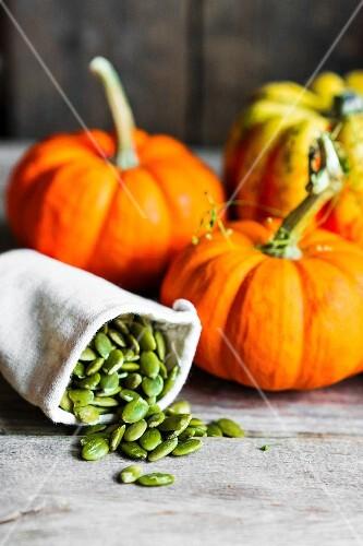 An arrangement of pumpkins and pumpkin seeds