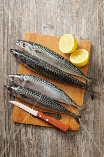 Mackerel on a wooden board with a knife and a halved lemon