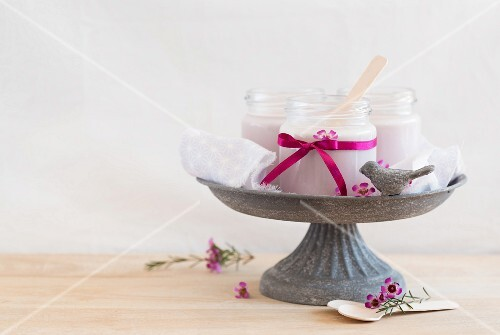 Homemade yoghurts with blueberry powder in a bird bath