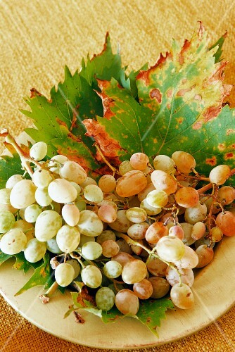 Plate of fresh grapes and vine leaves
