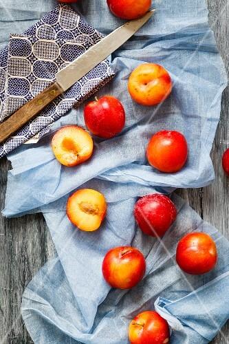 Fresh plums with a knife on a cloth