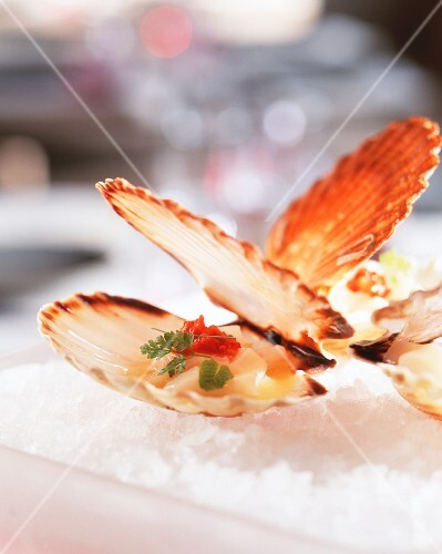 Marinated scallops in a shell