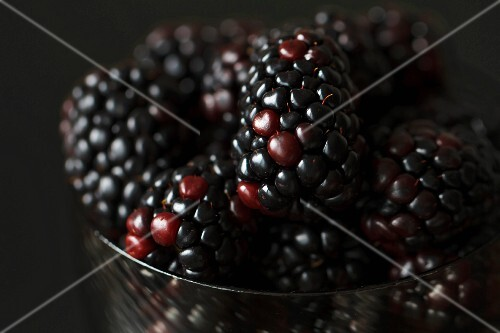 Close Up of Fresh Organic Blackberries