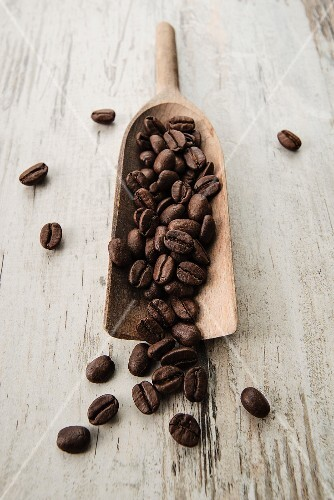 Coffee beans on a scoop on a light wooden surface