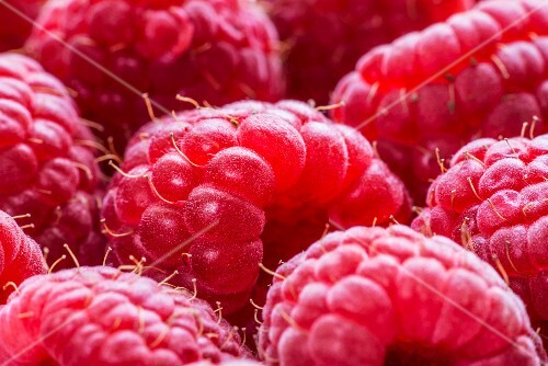 Raspberries (close-up)