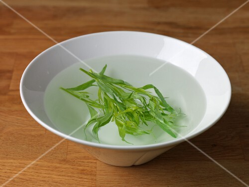 Cold extraction of tarragon for flavour