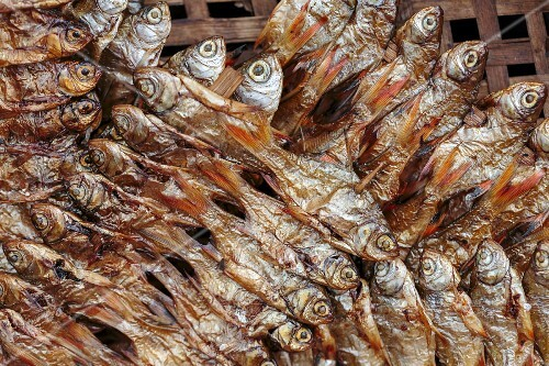 Dried fish on skewers, Thailand