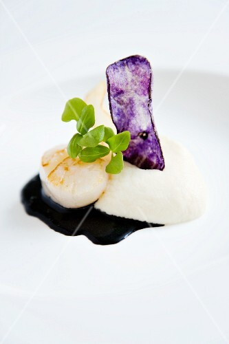 Grilled scallops on celeriac purée with sepia sauce