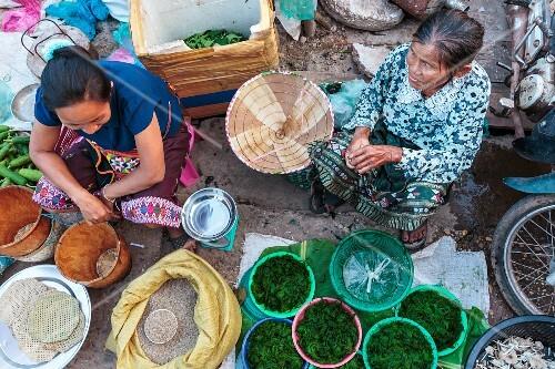 Market women selling river algae. Vientiane, Laos