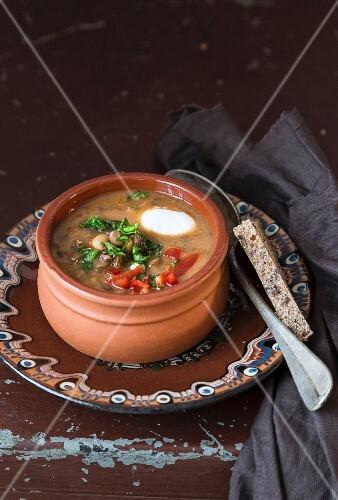 Lentil soup in a terracotta bowl