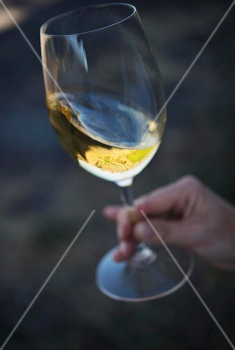 A hand holding a glass of white wine
