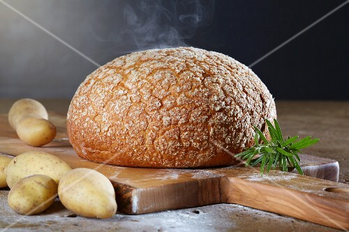 A loaf of potato and wheat bread on an olive wood board with potatoes and rosemary