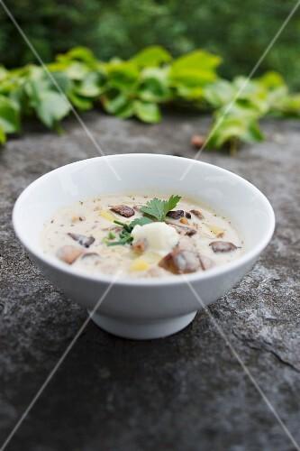 Salon mushroom soup with diced potatoes and sour cream at the romantic hotel 'Jagdhaus Waldidyll' im Hartenstein