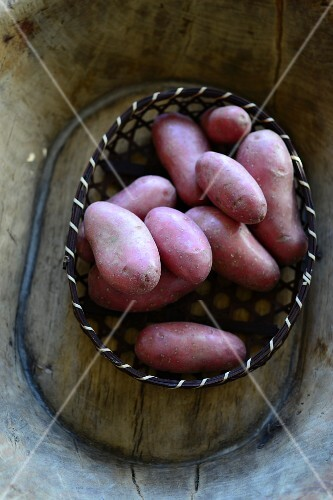 Red-skinned potatoes in a basket